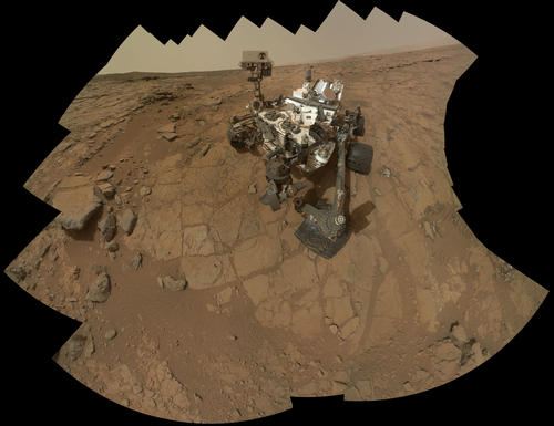 rover self portrate