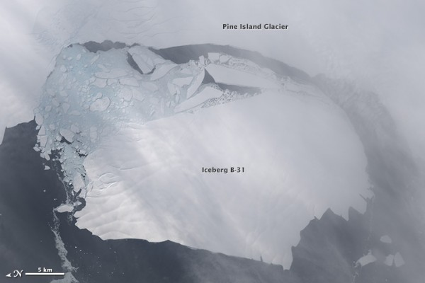 Iceberg B-31 acquired November 13, 2013