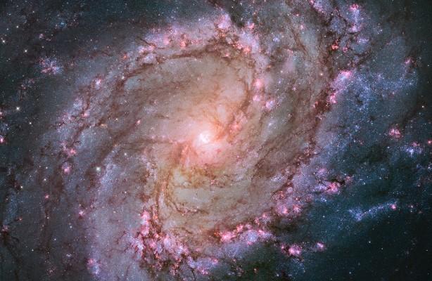 nearby spiral galaxy M83